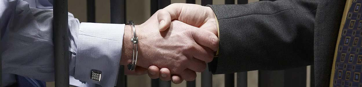 ceza avuktının baktıgı davalar